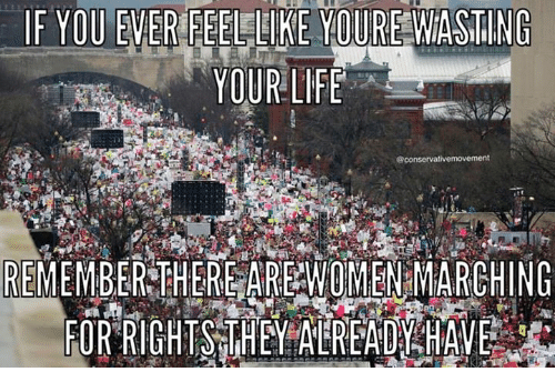 Womens March Meme